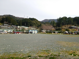 DSC_3571_1.JPG